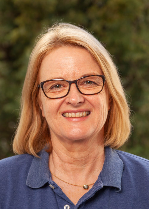 Christinenodler